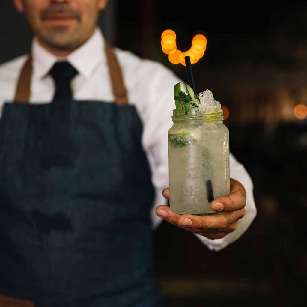 Επαγγελματίας Bartender